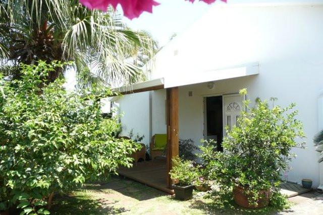 Photo 2 palmiers (Les)